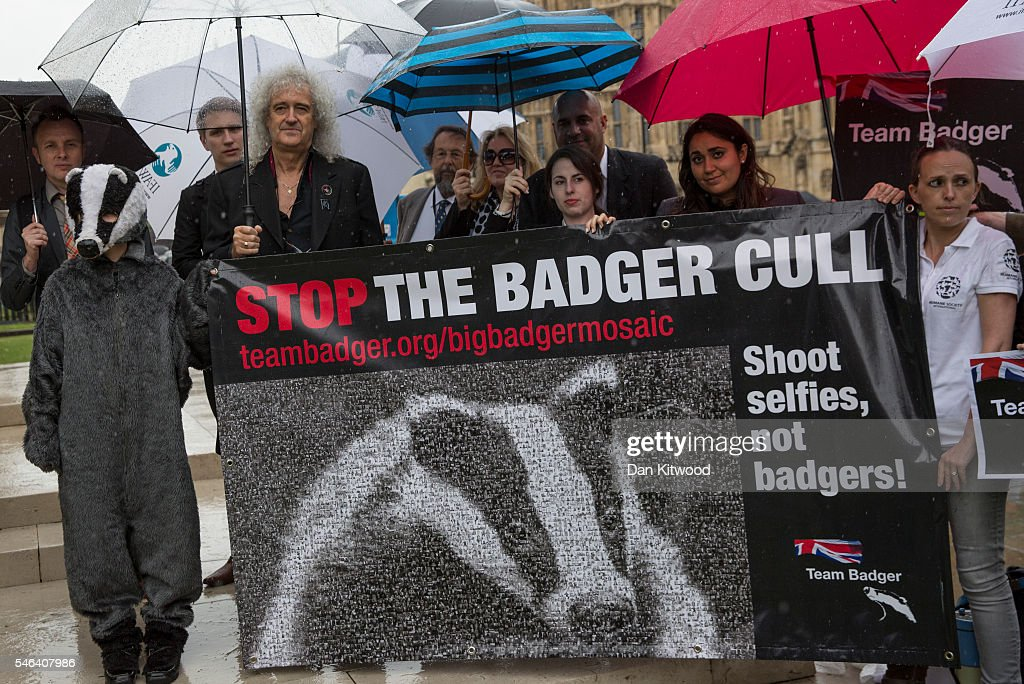 Celebrities Protest At Planned Badger Cull : News Photo