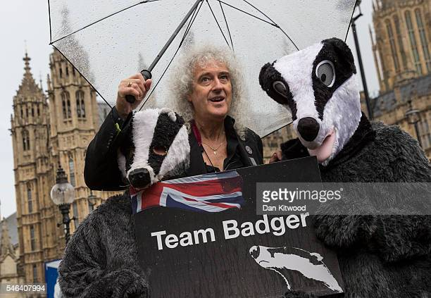 Former Queen guitarist and campaigner Brian May poses with people dressed as Badgers during a photocall on July 12 2016 in London England The event...