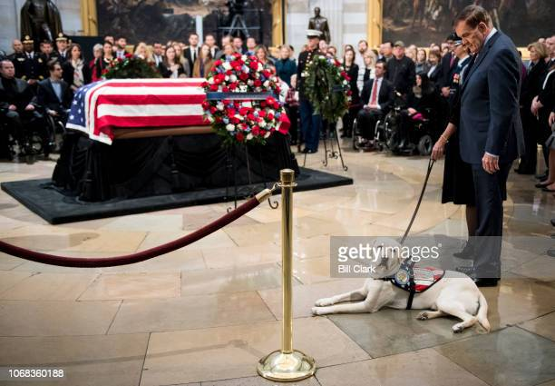 Former Secretary of Homeland Security Tom Ridge looks down as Sully former US President George H W Bush's service dog visits the Capitol Rotunda as...