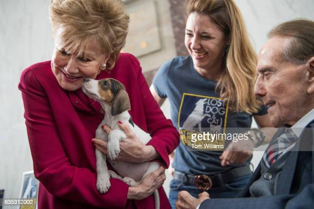 Former Sen Bob Dole RKan and his wife former Sen Elizabeth Dole RNC attend the Paws for Love Valentines Day animal adoption event in Rayburn Building...