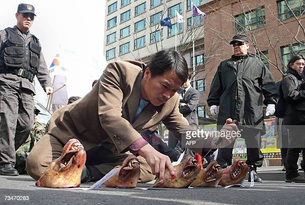 Former South Korean army commando sticks a knife into the jaws of a dog's head during he and others stage an anti-Japanese protest near the Japanese...
