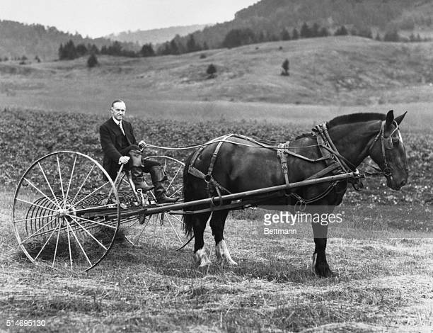 Former US president Calvin Coolidge drives a hay rake on his Vermont farm in 1931 two years after leaving the presidency