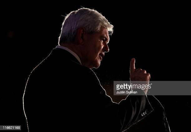 Former US Speaker of the House and republican candidate for president Newt Gingrich speaks during the 2011 Republican Leadership Conference on June...