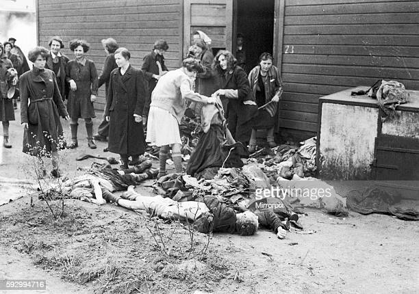Former women prisoners of Bergen Belsen concentration camp stripping the dead of their clothing for burning after it was liberated by the forces of...