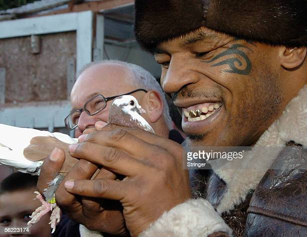 Former world heavyweight boxing champion Mike Tyson meets up with a pigeon fancier Horace Potts , of Bloxwich, Walsall, West Midlands on November 18,...