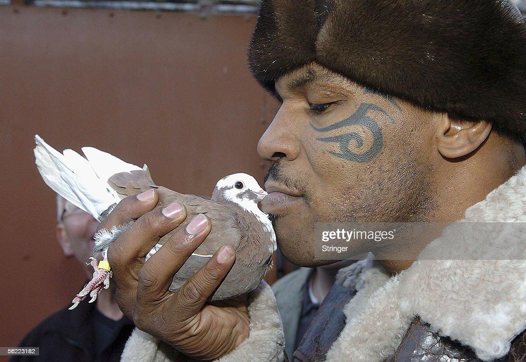 Iron Mike Tyson Visits Pigeon Fancier
