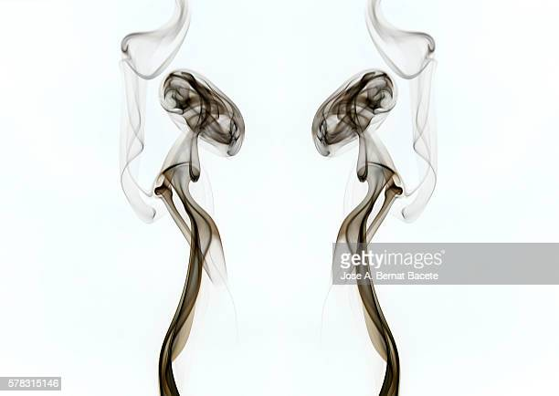 forms and shapes smoke resemblance to human figures on a white background - wispy stock photos and pictures
