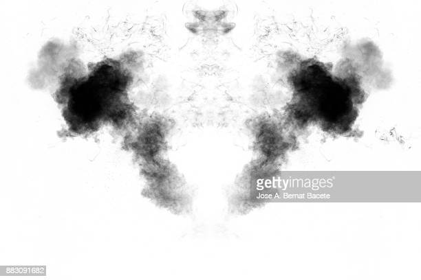 Forms and textures of an explosion of smoke and powder of black and gray color on a  white background.