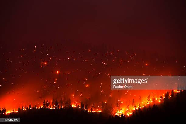 A forrest fire burning the side of a mountain in Montana.