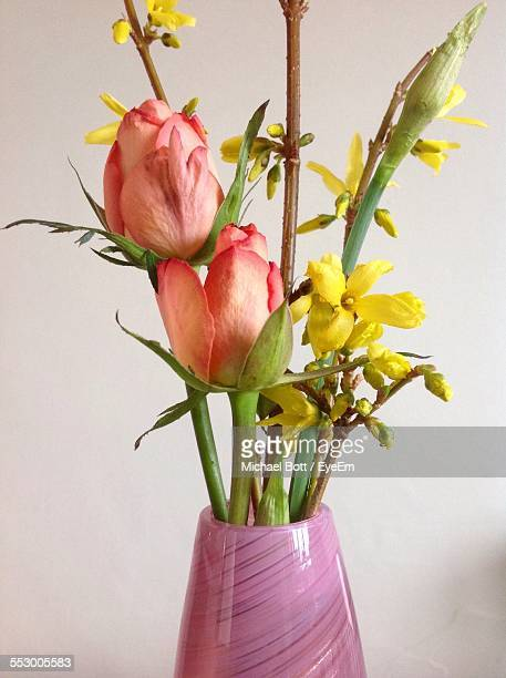 Forsythia With Tulips In Vase