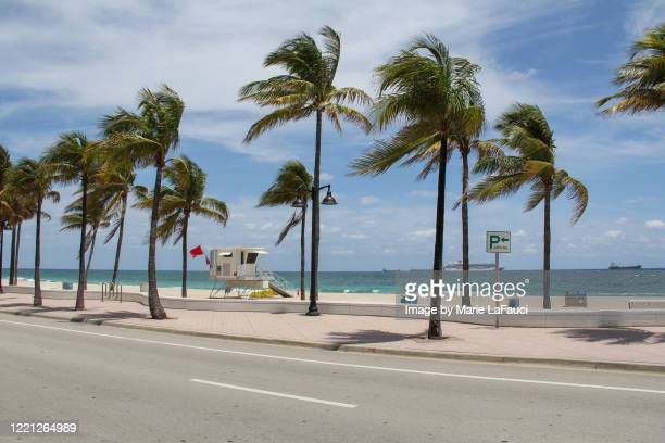 fort lauderdale beach closed due to covid-19 - empty streets stock pictures, royalty-free photos & images