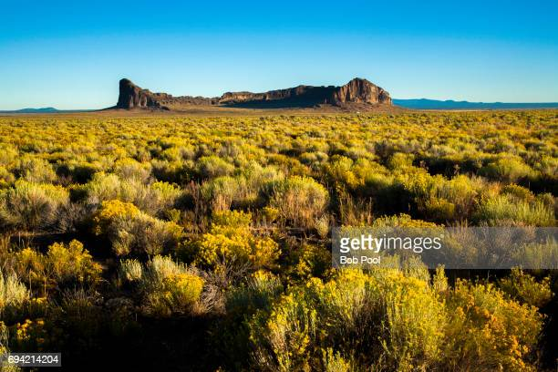 fort rock state park located near silver lake, oregon. - sagebrush stock pictures, royalty-free photos & images