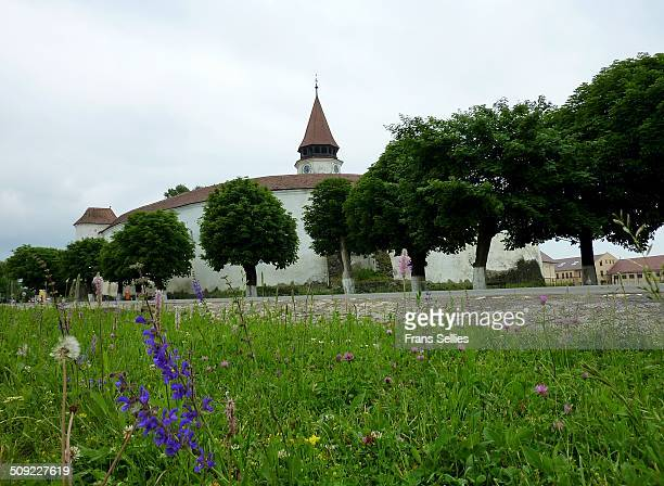 fortified church in prejmer - frans sellies stock pictures, royalty-free photos & images