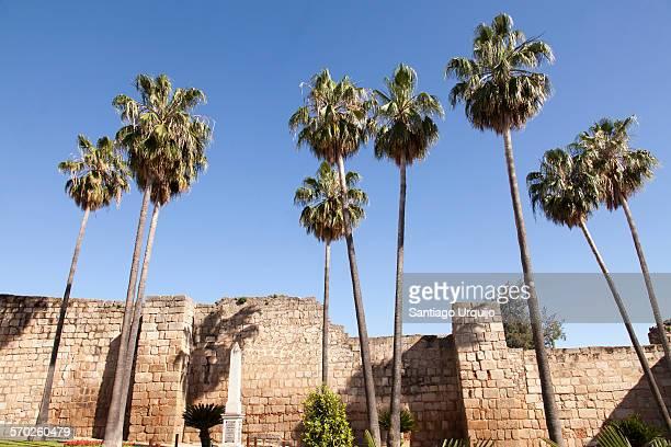 Fortified wall of the Alcazaba of Merida