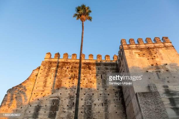 fortified walls of castle of jerez de la frontera - ヘレスデラフロンテラ ストックフォトと画像