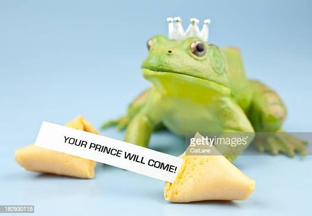 Vermögen-Serie-Froschkönig
