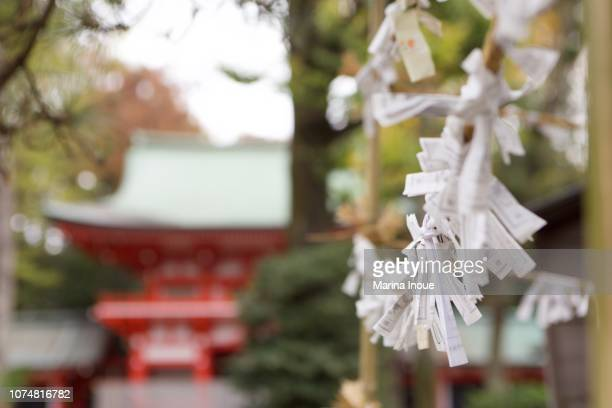 fortune telling paper tied at shrine - inoue stock photos and pictures