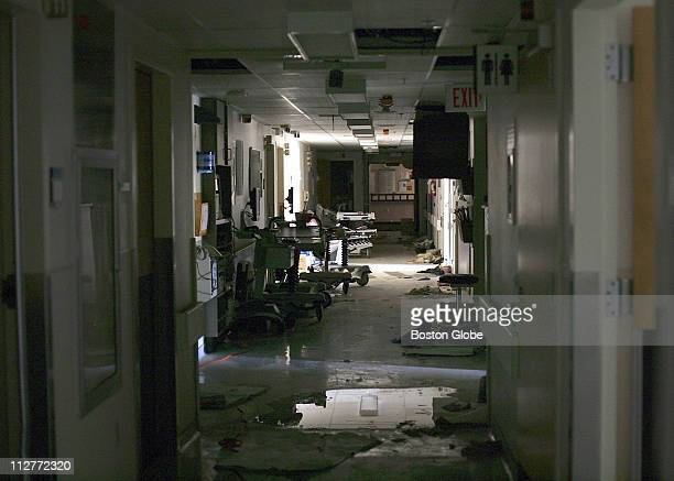 Forty Four bodies were removed Sunday September 11 2005 from Memorial Medical Center in New Orleans LA A hospital official said the patients had died...