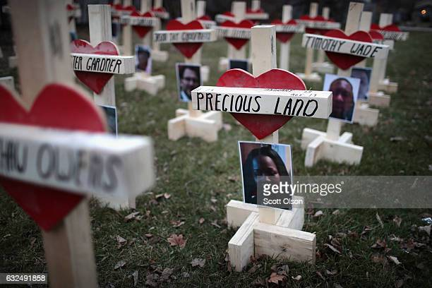 Fortythree crosses sit in a vacant lot in the Englewood neighborhood on January 23 2017 in Chicago Illinois Each cross created by Greg Zanis...