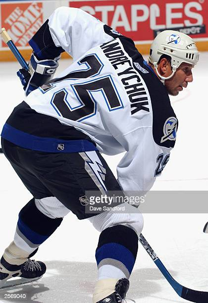 Forward Dave Andreychuk of the Tampa Bay Lightning gets set for a face-off against the Buffalo Sabres during the preseason NHL game on September 30,...