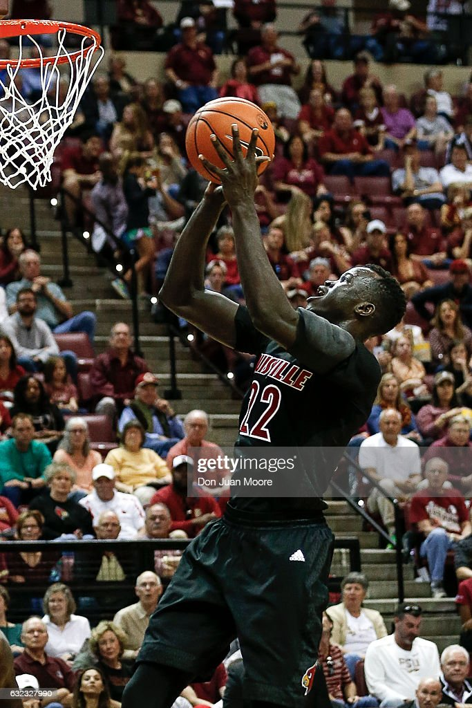 Forward Deng Adel #22 of the Louisville Cardinals shoots a jumper during the game against the Florida State Seminoles at the Donald L. Tucker Center on January 21, 2017 in Tallahassee, Florida. The 10th ranked Seminoles defeated the 12th ranked Cardinals 73 to 68.