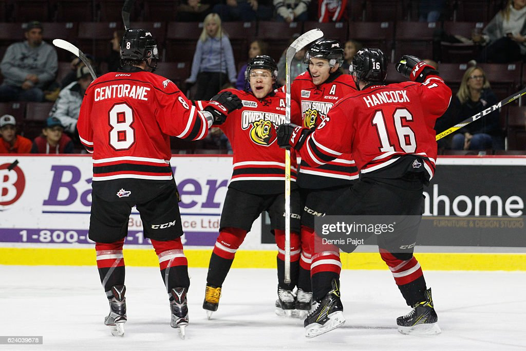 Forward Petrus Palmu #25 of the Owen Sound Attack celebrates his game winning overtime goal against the Windsor Spitfires to make it 3-2 for Owen Sound on November 17, 2016 at the WFCU Centre in Windsor, Ontario, Canada.