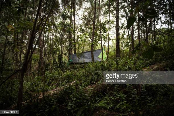 A forward tent of New People's Army guerillas lie hidden amid trees and dense vegetation on April 1 2017 in the remote hinterlands of Mountain...