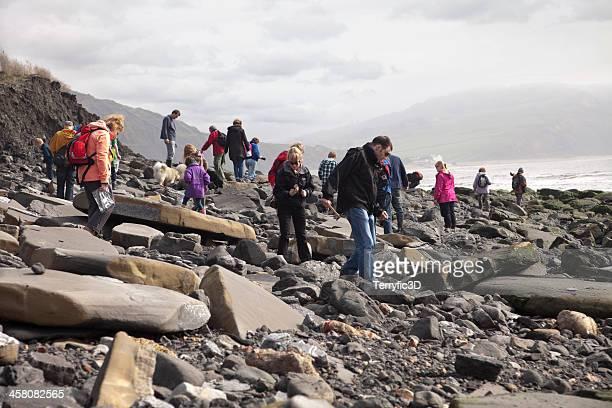 fossil collectors at lyme regis, uk - terryfic3d bildbanksfoton och bilder