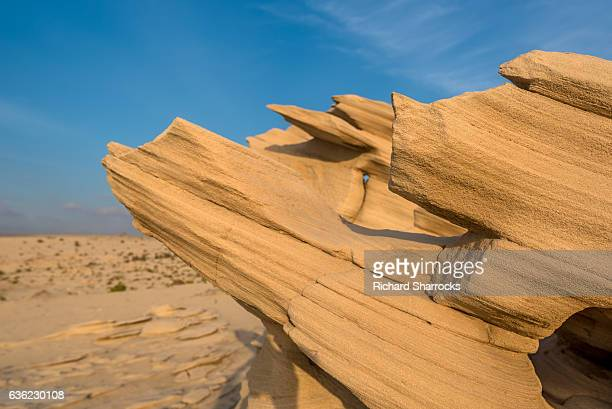 fossil dunes, al wathba, abu dhabi - uae heritage stock photos and pictures