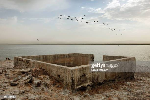 Foundations of buildings of an early 20th century resort that was used before the rising waters of the Salton Sea turned this hill into Mullet Island...