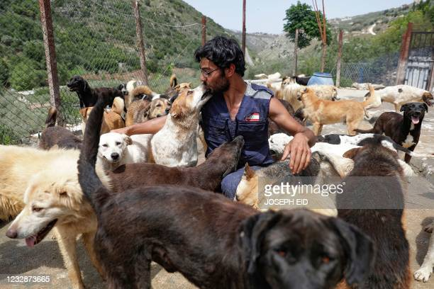 Founder of Woof N' wags shelter Joe Okdjian plays with a blind rescued dog in the shelter on the outskirts of the village of Kfar Chellal south of...