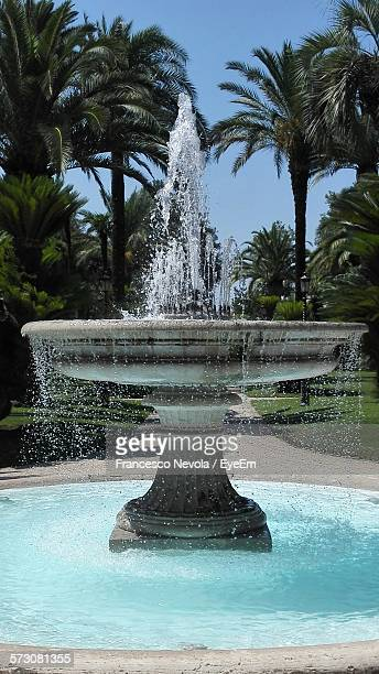 fountain against palm trees in park - fountain stock pictures, royalty-free photos & images