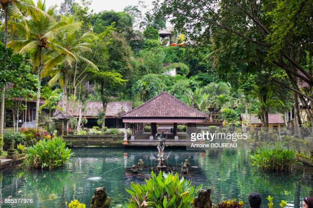 Fountain and pond of the temple of Gunung Kawi, holy water, Sebatu village, Bali, Indonesia