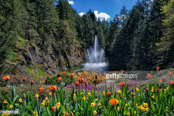 Butchart Gardens Stock Pictures Royalty Free Photos Images