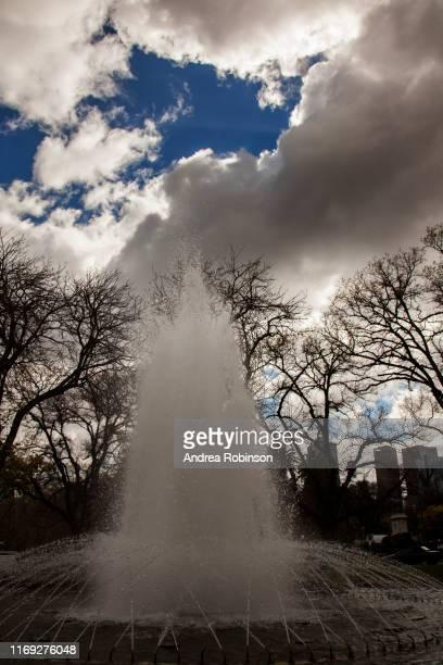 fountain, carlton gardens, melbourne, victoria, australia - carlton gardens stock pictures, royalty-free photos & images