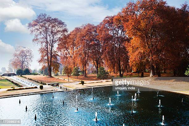 fountain in a garden, nishat bagh, srinagar, jammu and kashmir, india - mughal empire stock photos and pictures