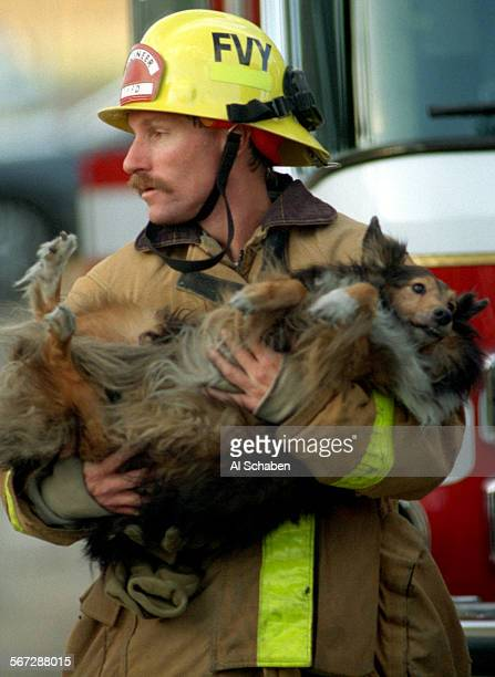 VALLEY––Fountain Valley fireman Jim Ruth carries a dog overcome by smoke from a house fire at 16275 Vernon St in Fountain Valley Saturday afternooon...