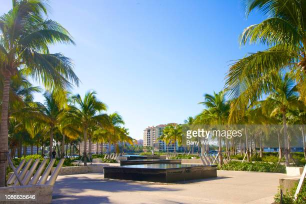 fountains and palm trees at south pointe park, miami beach - miami beach south pointe park stock pictures, royalty-free photos & images