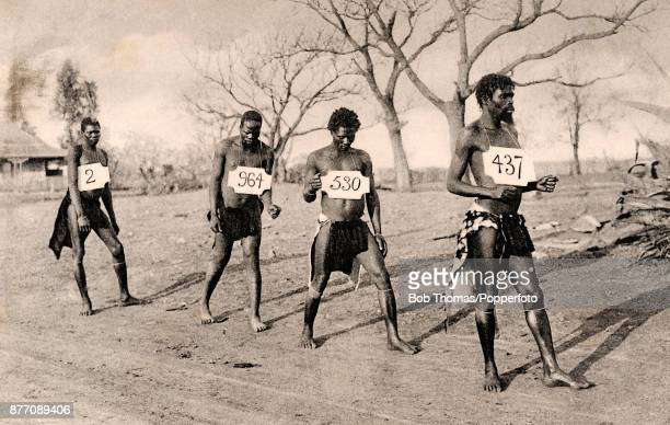 Four African tribesmen in native garb wearing numbers around their necksd as part of the slave trade circa 1904
