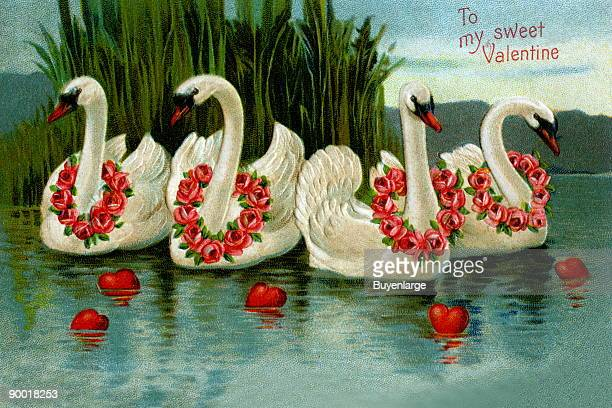 Four beautiful swans with rings of flowers on their necks swim in a lake with floating hearts The words on this vintage postcard are 'To my Sweet...