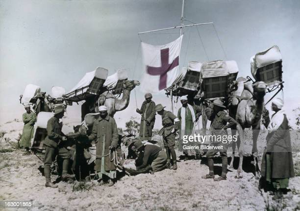 Four camel ambulances attached to the Imperial Camel Corps at Rafa which was used as a base for the attack on Gaza held by forces of the Ottoman...