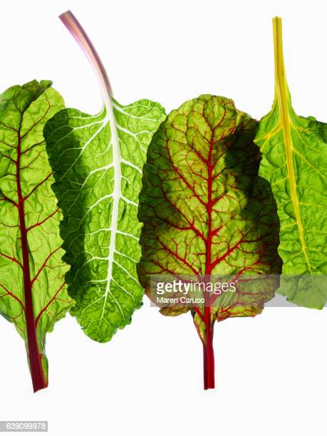 Four chard leaves