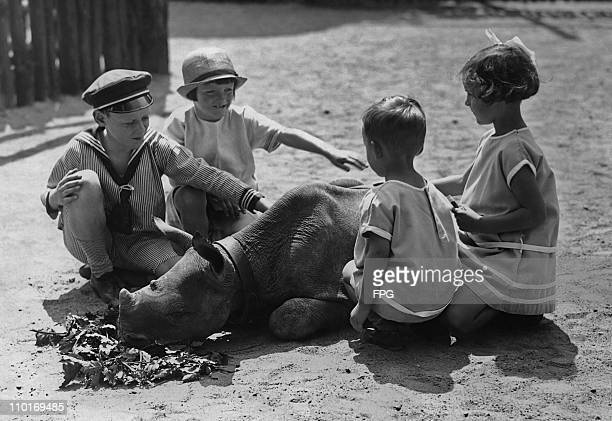 Four children playing with a four month old baby rhinoceros at Berlin Zoo in 1928.