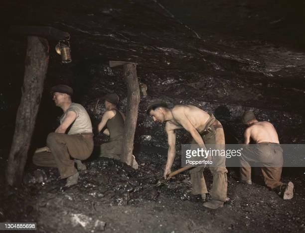 Four coal miners use pick axes and shovels to remove coal from a seam at the pit face of Cannop Coal Company's Cannop Colliery near Coleford in the...