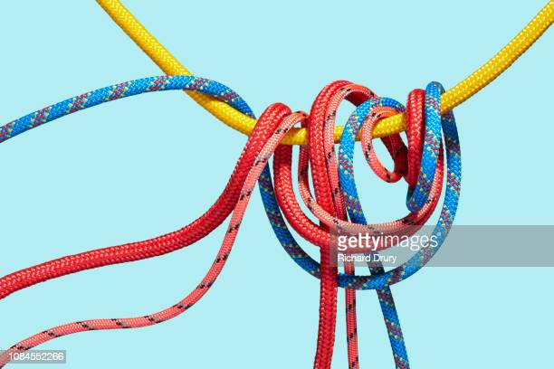 Four coloured ropes knotting together