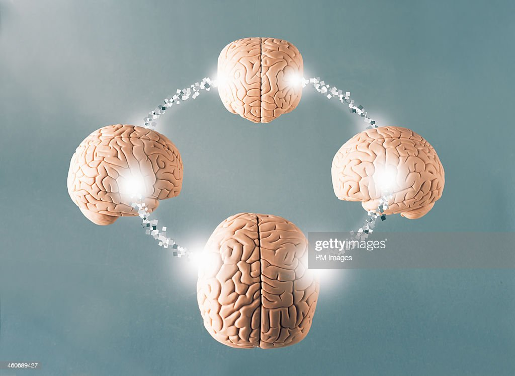 Four connected brains : Stock Photo