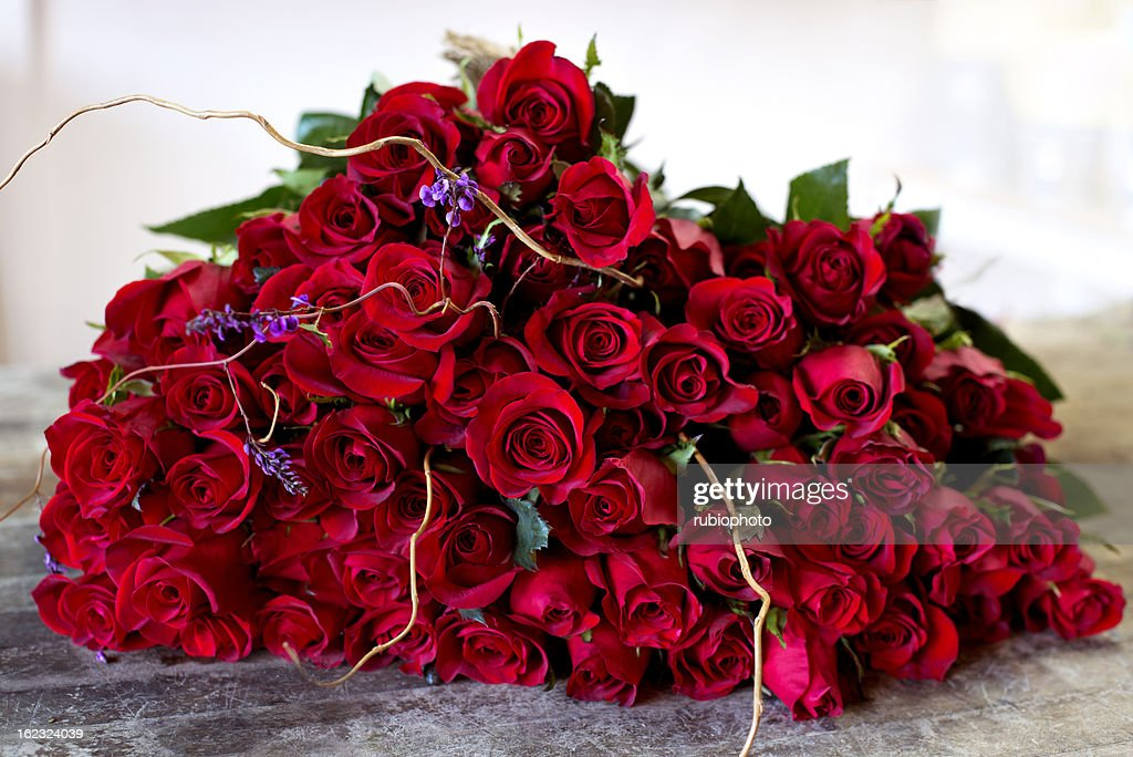 Four Dozen Red Roses Stock Photo Getty Images