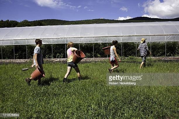 Four employees walk past a green house at the Clear Brook Organic Farm August 3, 2011 in Shaftsbury, Vermont. The 200-plus acre farm was started in...