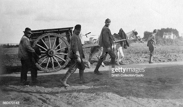 Four farmers and a horsedrawn cart on a field 1916