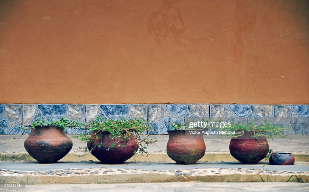 Four flower pots and a half : Stock-Foto